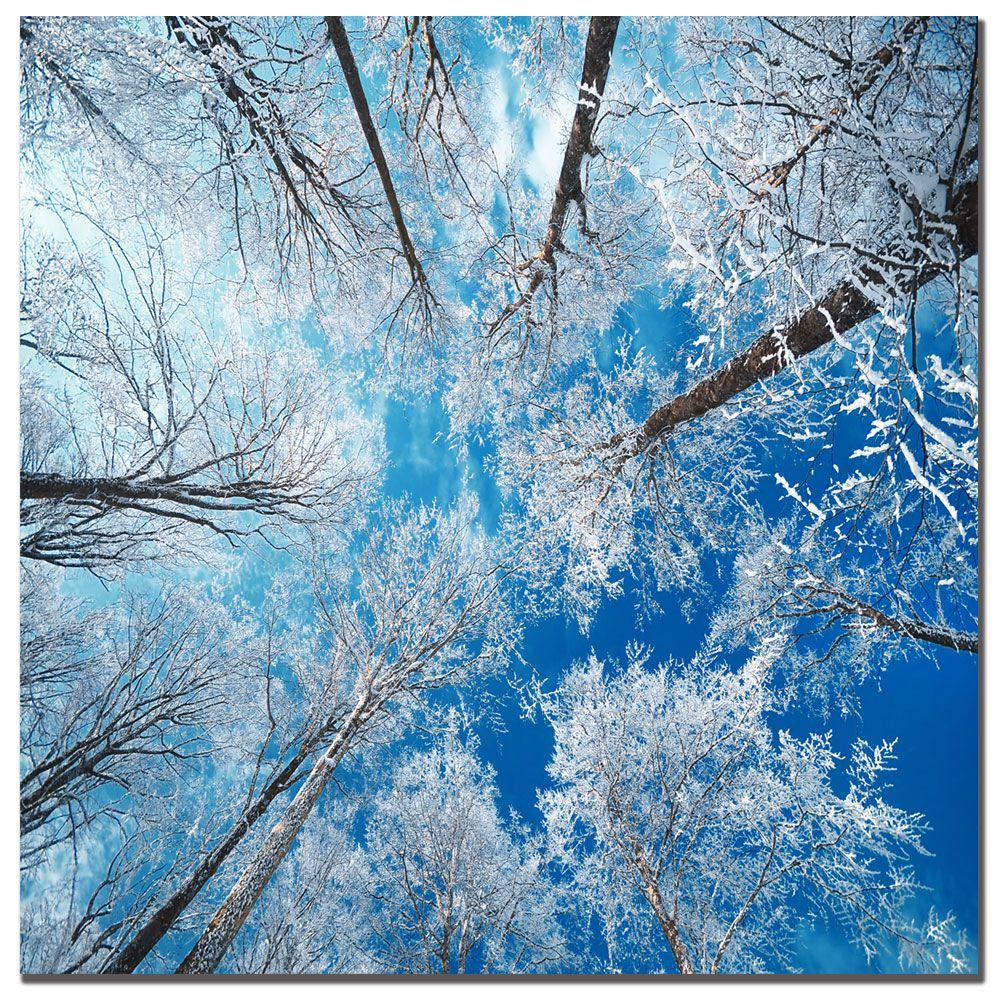 Trademark Fine Art 24 in. x 24 in. Frozen Sky Canvas Art-DISCONTINUED