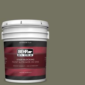 Behr Ultra 5 Gal Bxc 20 Amazon River Flat Exterior Paint And Primer In One 485305 The Home Depot