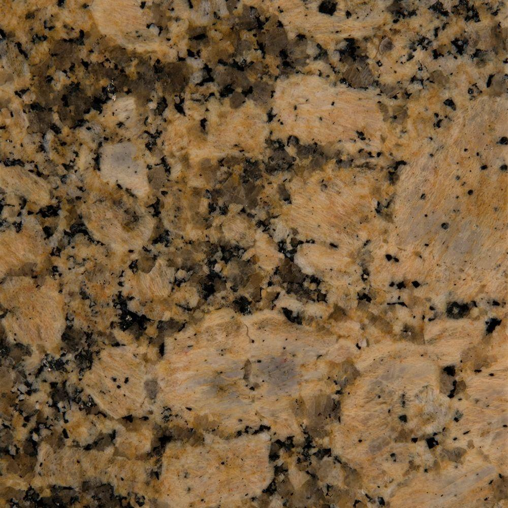 Stonemark 3 In X 3 In Granite Countertop Sample In Giallo Fiorito