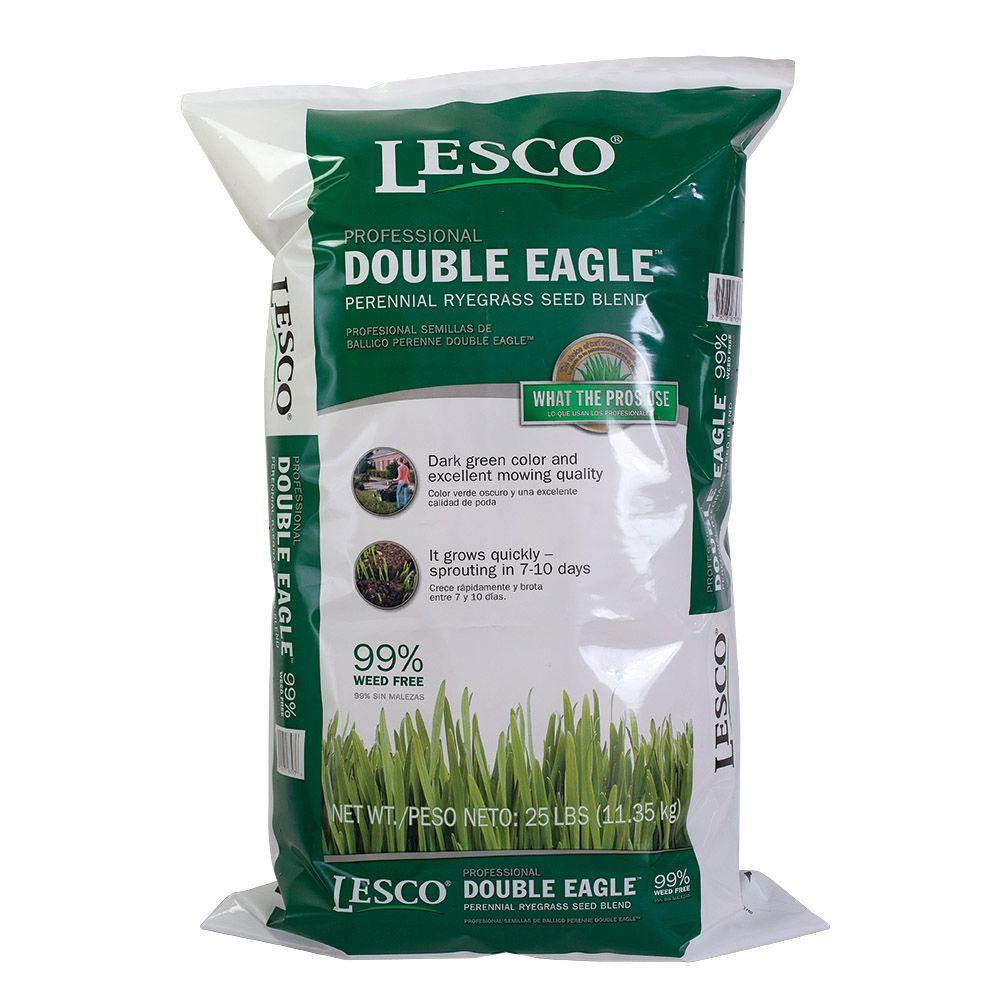 Double Eagle Turf Type Perennial Ryegrass Blend Seed