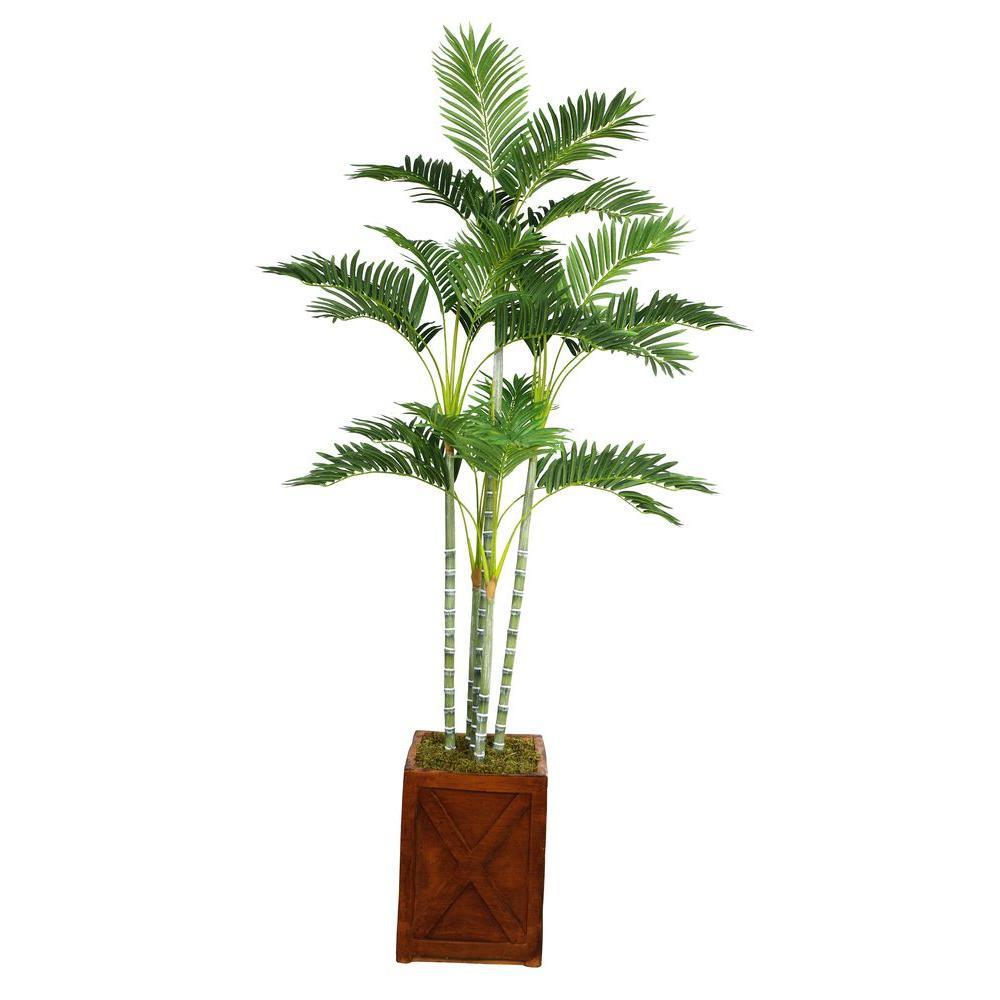 Laura Ashley 77 in. Tall Palm Tree in 13 in. Fiberstone P...