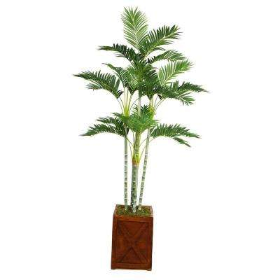77 in. Tall Palm Tree in 13 in. Fiberstone Planter