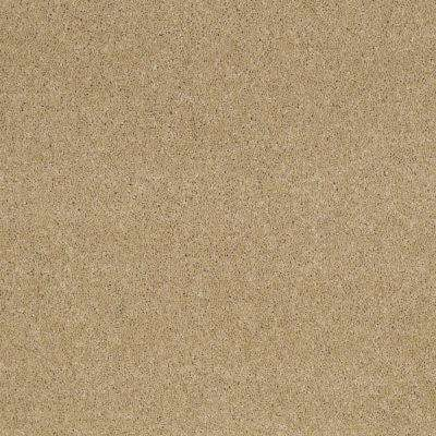 Carpet Sample - Tremendous I - Color Daybreak Texture 8 in. x 8 in.