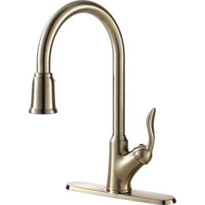 Transitional Collection Single-Handle Pull-Down Sprayer Kitchen Faucet in Stainless Steel