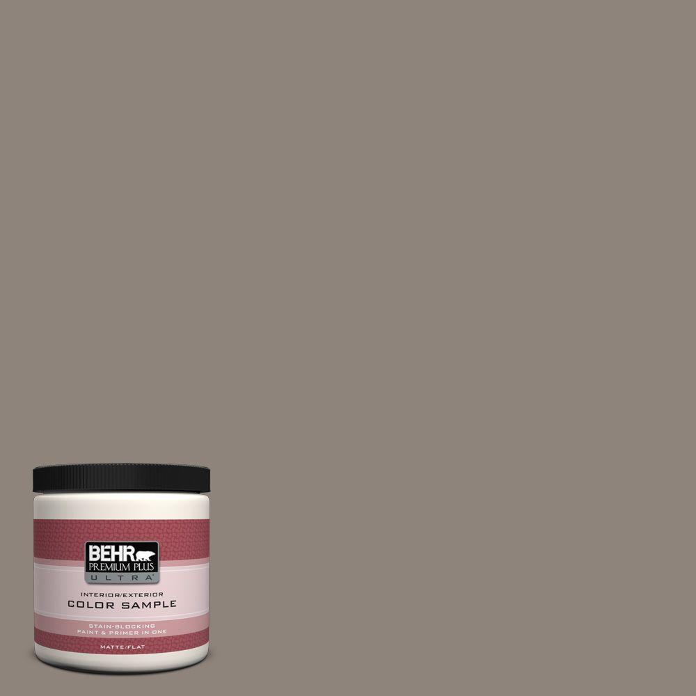 8 oz. #N200-5 Woodcraft Matte Interior/Exterior Paint and Primer in One