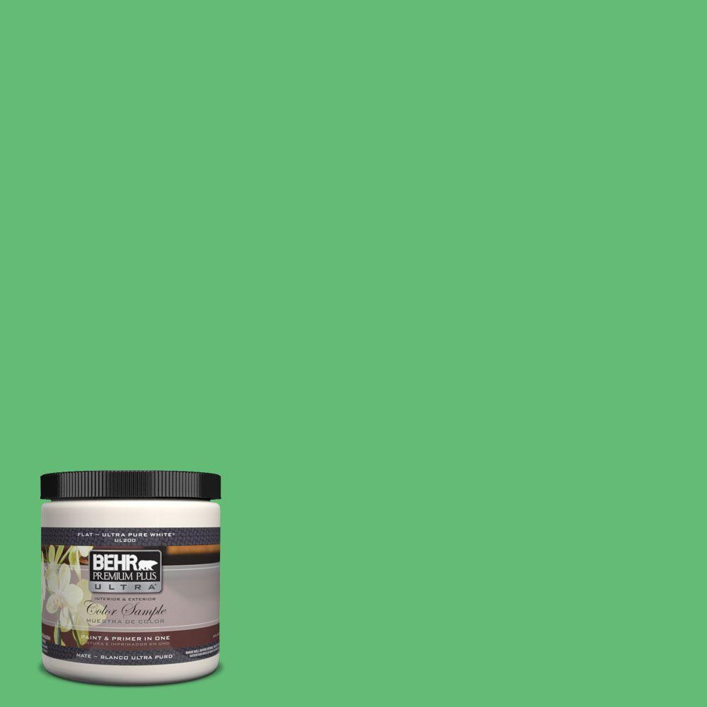 BEHR Premium Plus Ultra 8 oz. #450B-5 Lady Luck Interior/Exterior Paint Sample