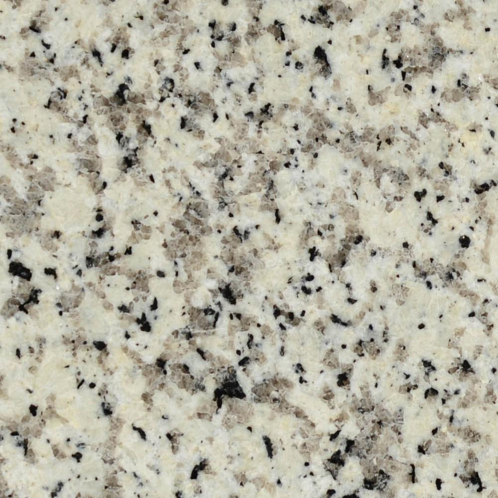 STONEMARK 3 In. X 3 In. Granite Countertop Sample In Crema