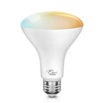 60-Watt Equivalent BR30 Dimmable Wi-Fi Smart LED Light Bulb