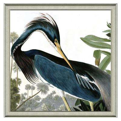 "24 in. x 24 in. Full Size ""The great blue heron"" Framed Archival Paper Wall Art"