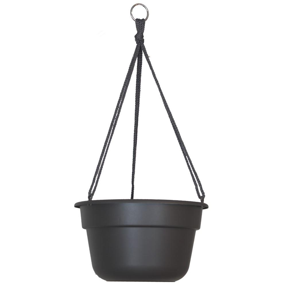 Bloem 12 in. Peppercorn Dura Cotta Plastic Hanging Basket