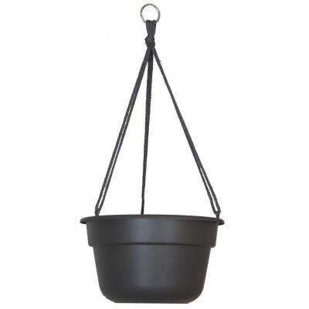 12 in. Peppercorn Dura Cotta Plastic Hanging Basket