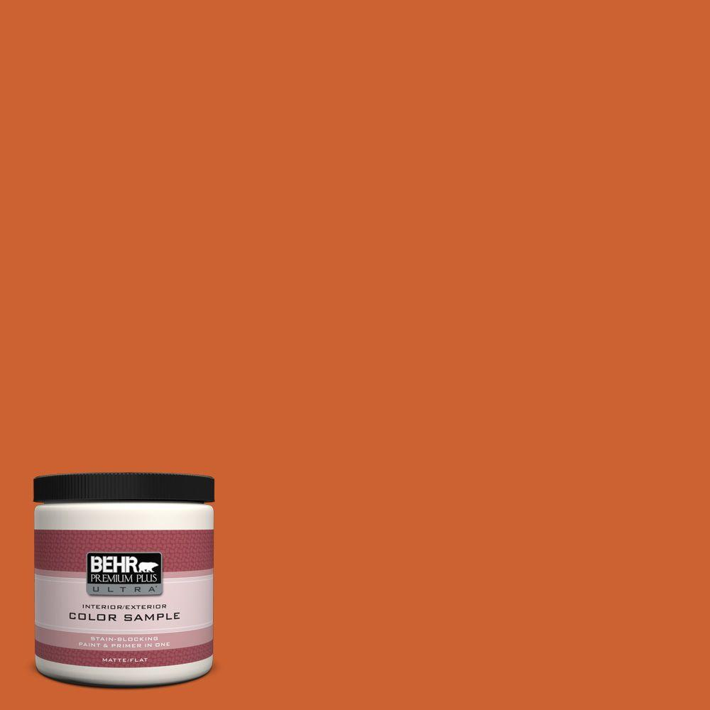 S H 250 Pumpkin Patch Matte Interior Exterior Paint And Primer In One Sample