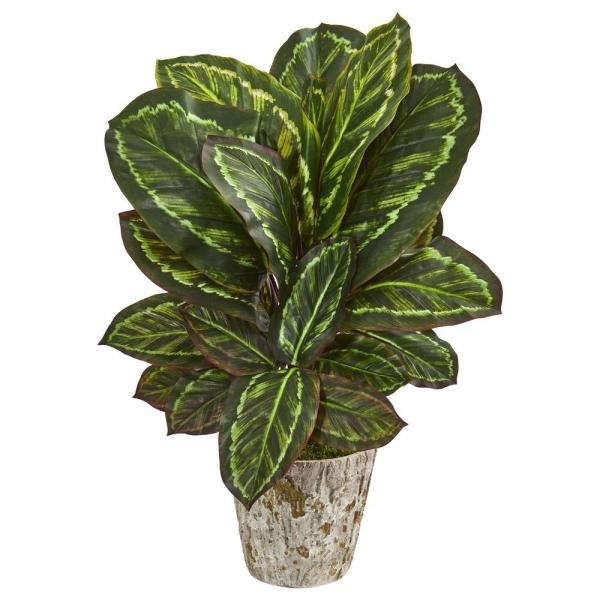 Nearly Natural Indoor 26-In. Maranta Artificial Plant in Weathered Oak Planter