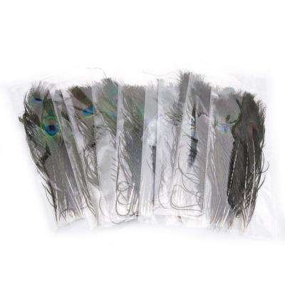 1 in. H Multi-Colored Beautiful Decoration Peacock Feathers (100-Piece)