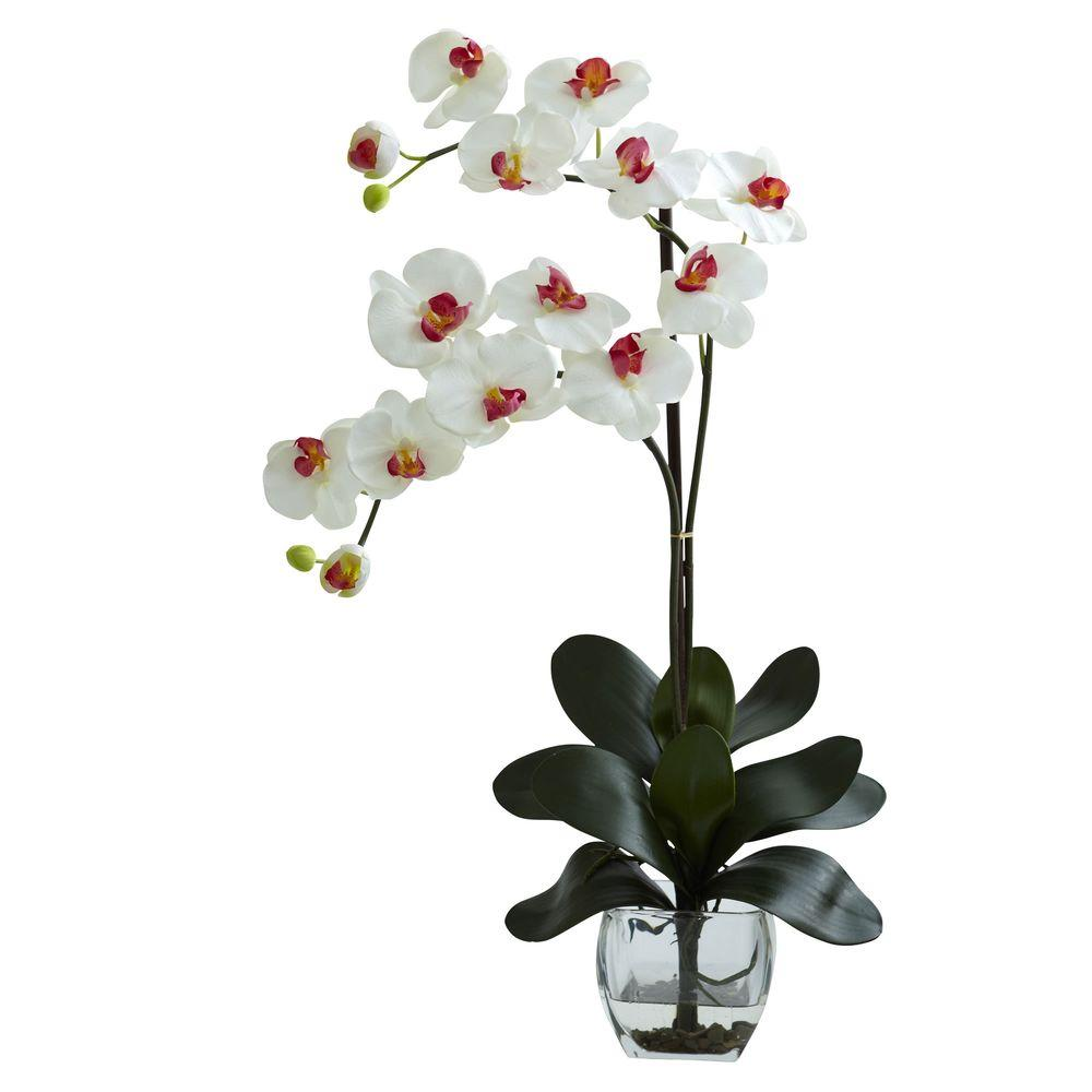 Nearly natural double phalaenopsis orchid with vase arrangement in nearly natural double phalaenopsis orchid with vase arrangement in white reviewsmspy