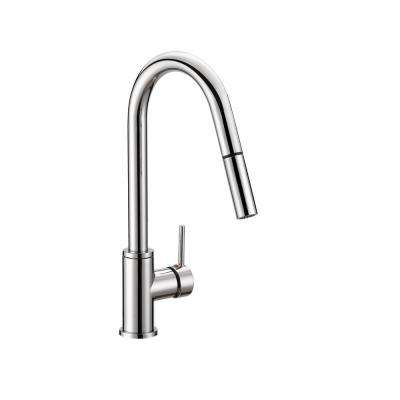 Eastport Single-Handle Pull-Down Sprayer Kitchen Faucet in Polished Chrome