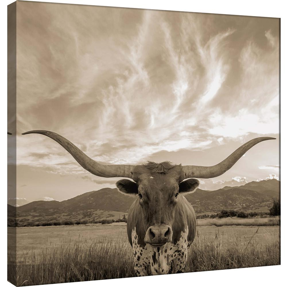 15 in x 15 in longhorn printed canvas wall art