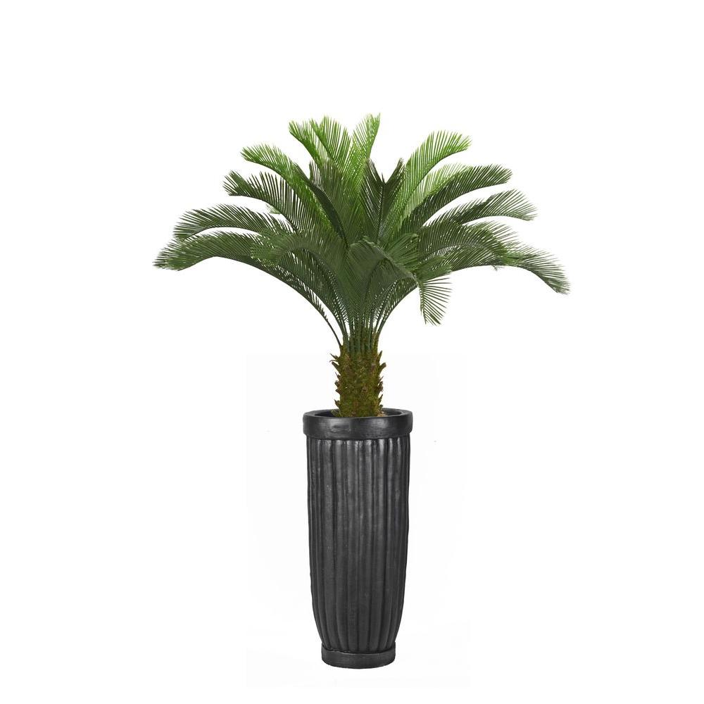 Laura Ashley 69 in. Tall Cycas Palm Tree in Planter, Black