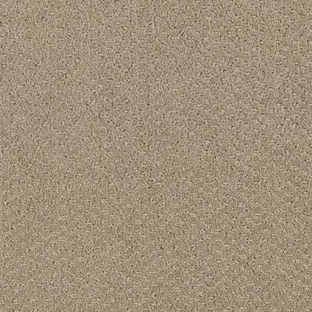 Lifeproof carpet sample katama ii color taupe treasure for Taupe color carpet