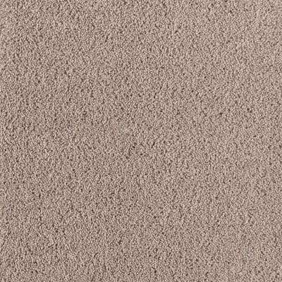 Rookie I - Color Spiced Tea Texture 12 ft. Carpet