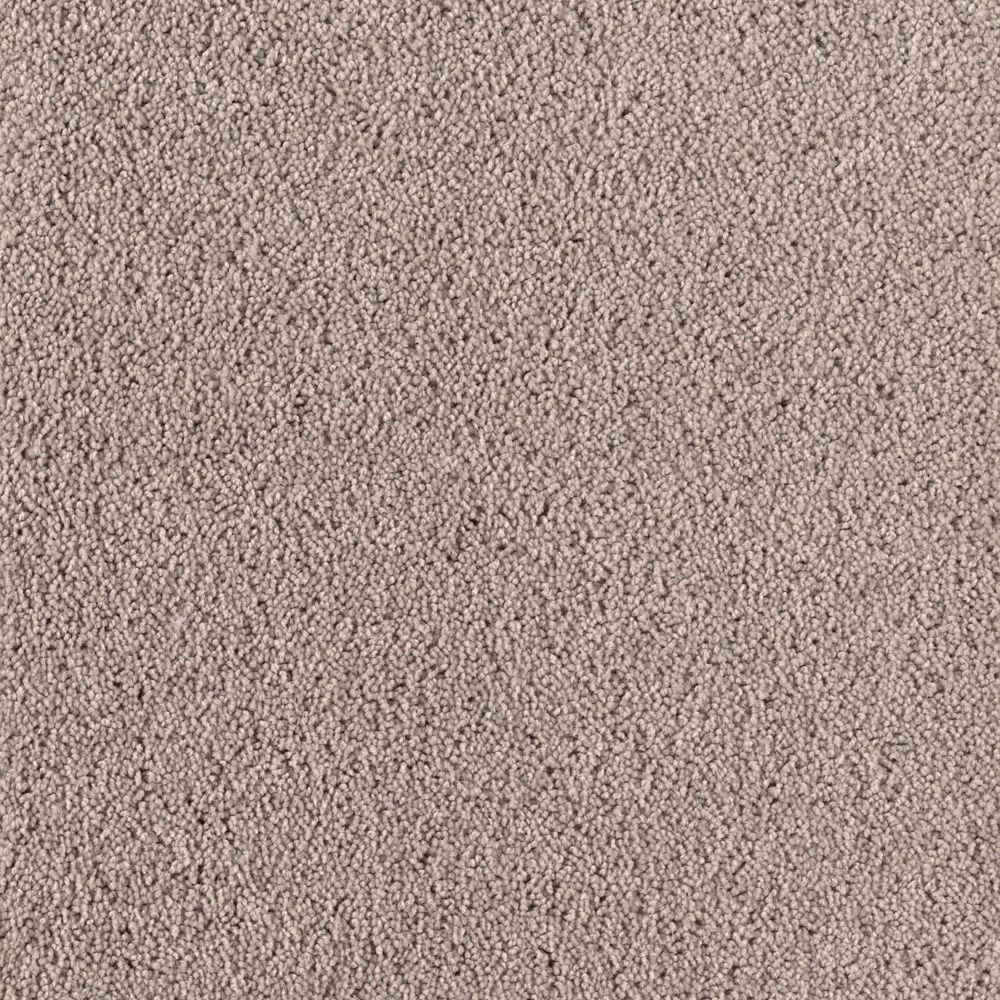 Rookie I - Color Spiced Tea Texture 12 ft. Carpet
