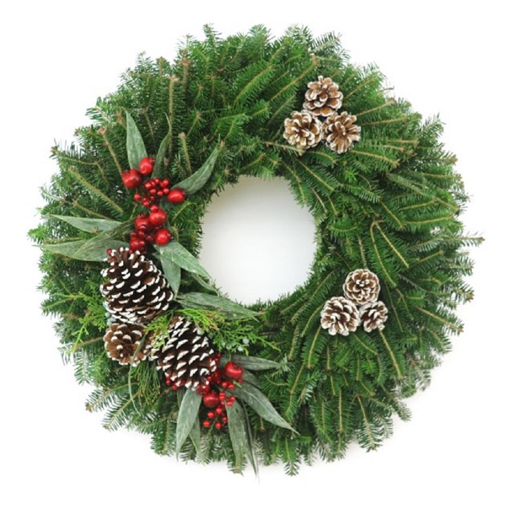fresh christmas frost fraser fir evergreen wreath live