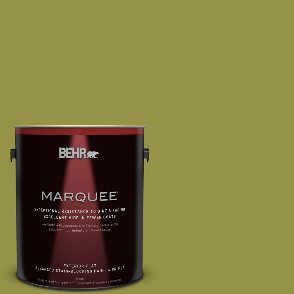 Home Decorators Collection 1-gal. #HDC-FL13-8 Tangy Dill Flat Exterior Paint
