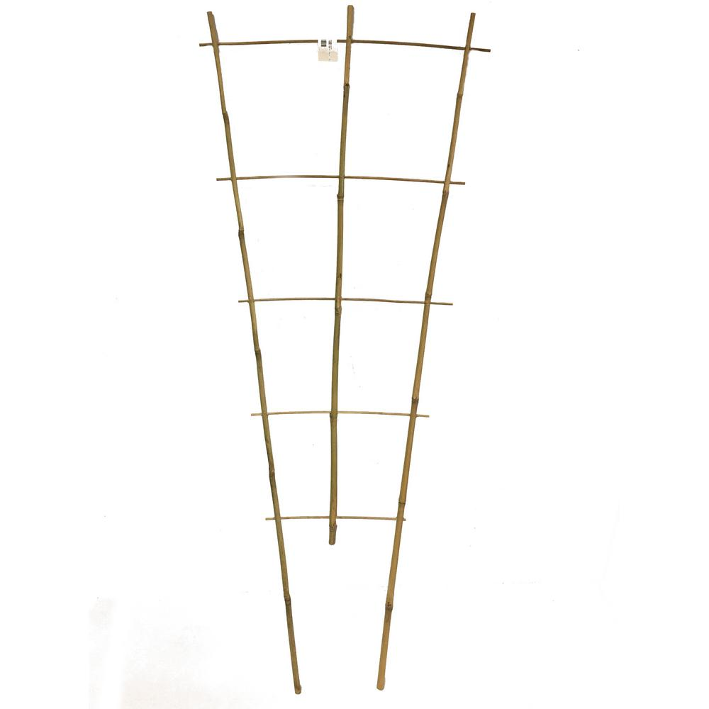 36 in. H Bamboo ladder Trellis, Set of 3