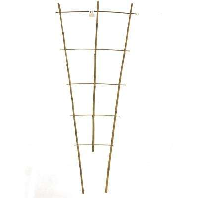 48 in. H Bamboo Ladder Trellis Single Piece