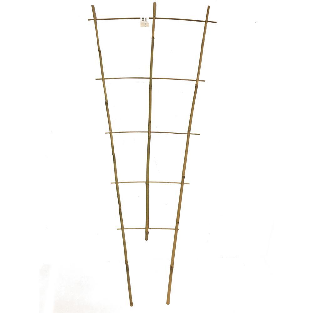 48 in. H Bamboo Ladder Trellis Single Piece