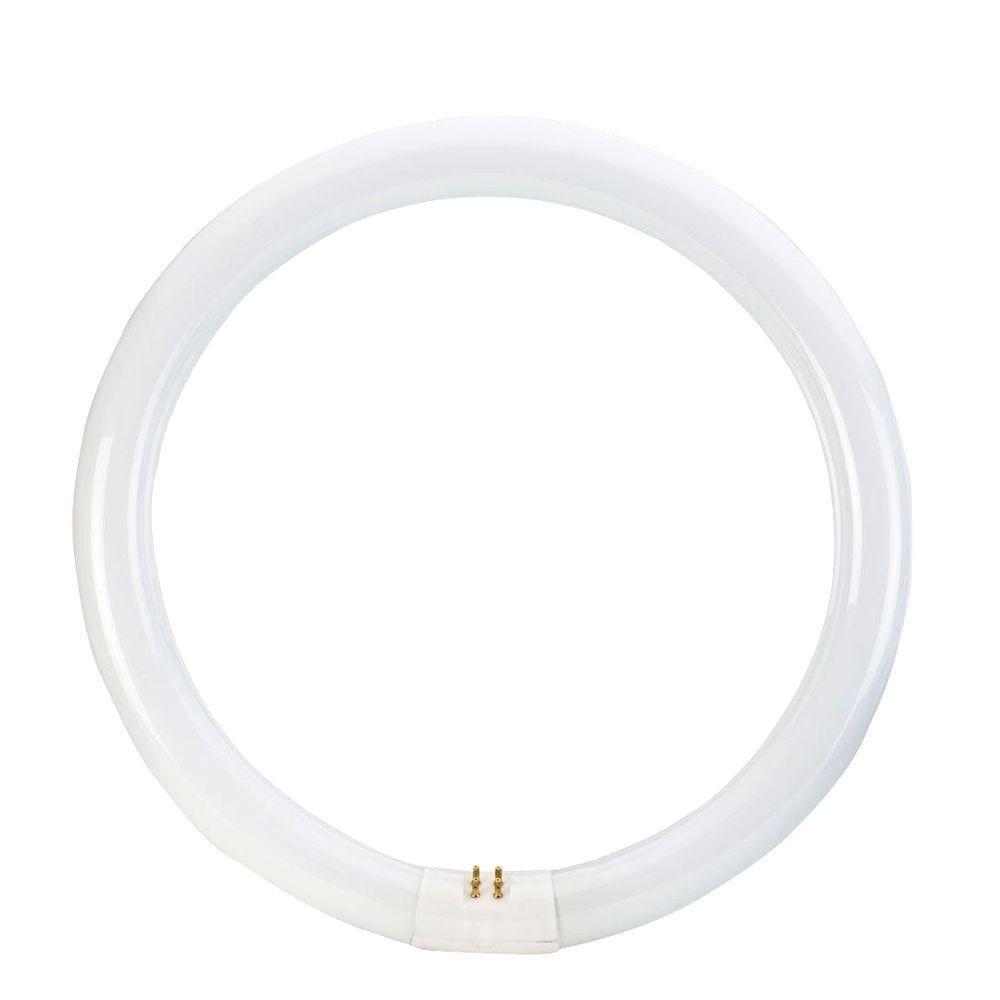 12 in. T9 32-Watt Daylight Deluxe (6500K) Circline Linear Fluorescent Light