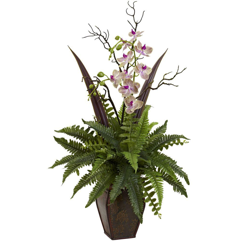 Fern and Orchid Arrangement