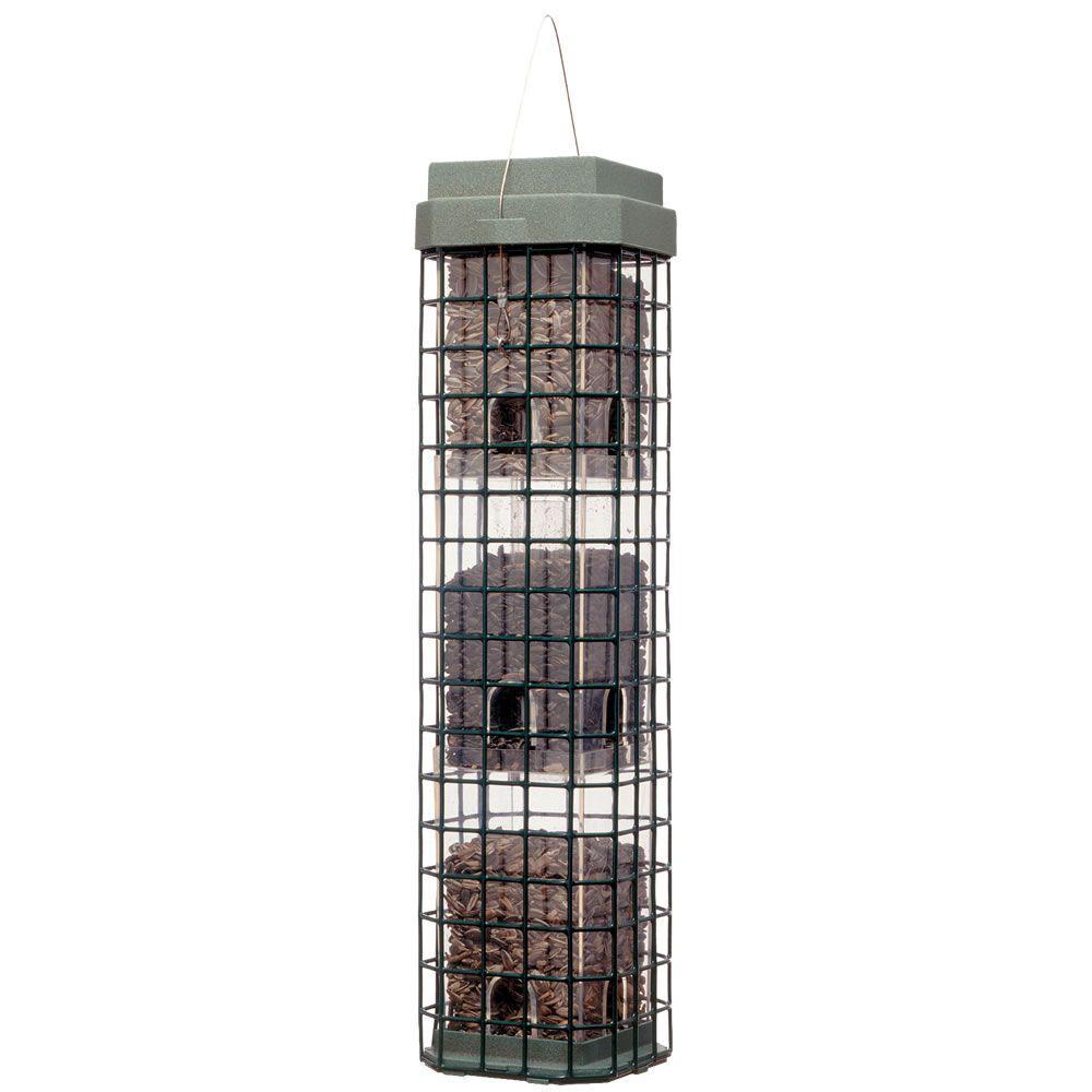Perky-Pet 4 lb. Wild Bird Even Seed Squirrel Dilemma