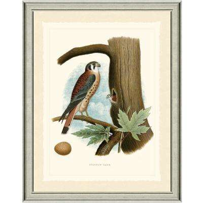 22 in. x 28 in. Sparrows Framed Archival Paper Wall Art