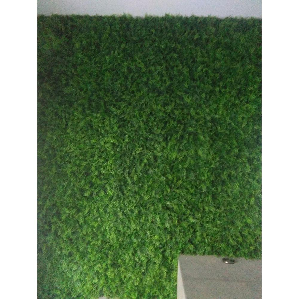 20 in. x 20 in. Artificial Fern Wall Panels (Set of