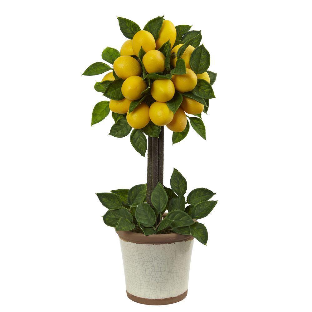 Lemon Ball Topiary Arrangement