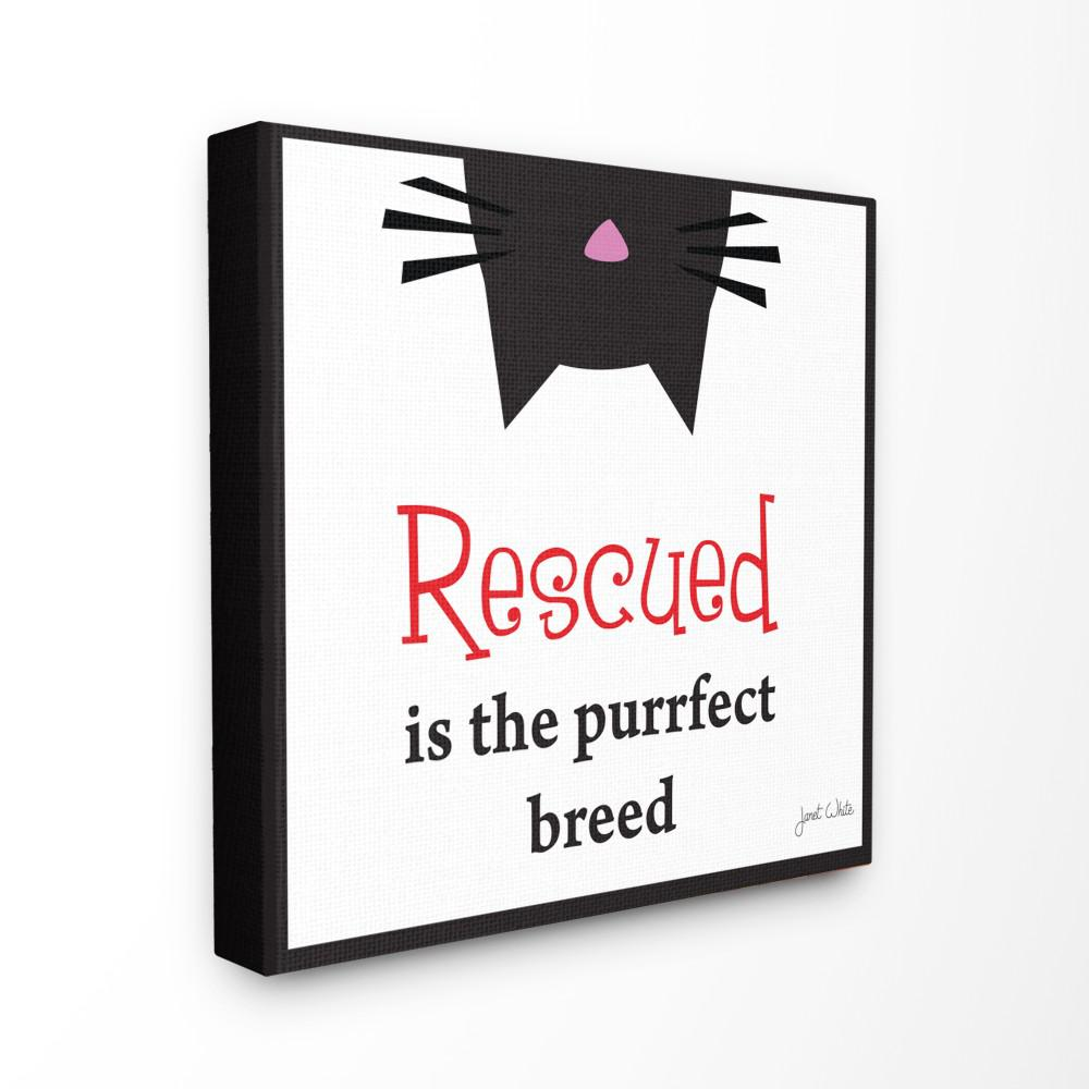 the stupell home decor collection 24 in x 24 in rescued is the
