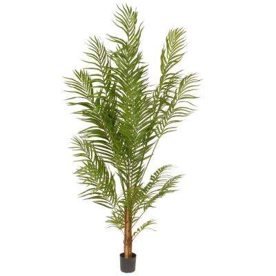 5.8 ft. Deluxe Areca Potted Palm Tree