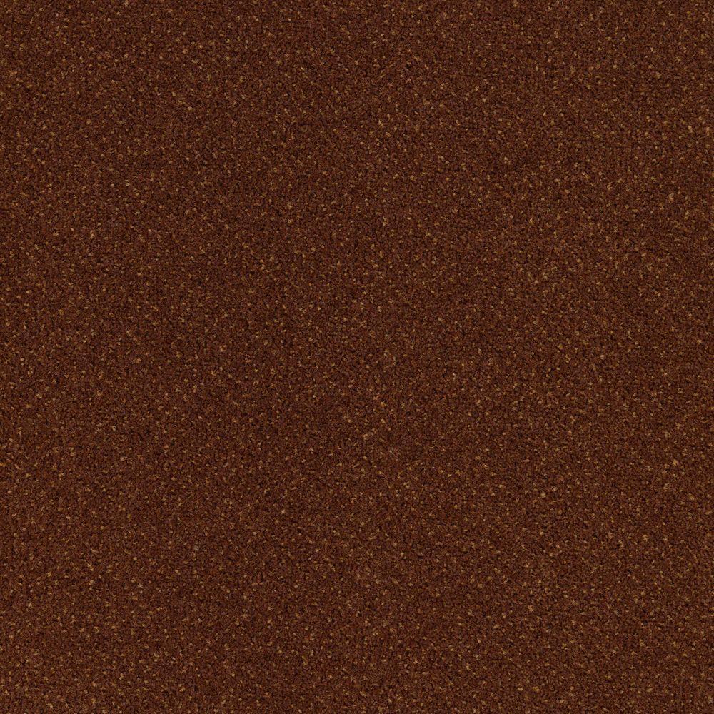 Market Share - Color Bronze Age 12 ft. Carpet
