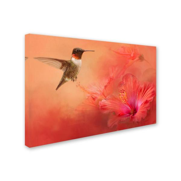 Trademark Fine Art Hummingbird And Peach Hibiscus By Jai Johnson Floater Frame Animal Wall Art 16 In X 24 In Ali14498 C1624g The Home Depot