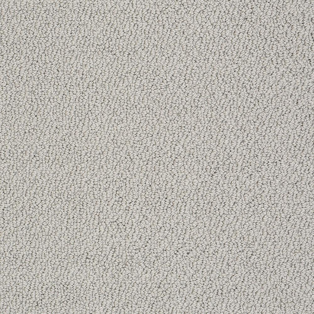 Shaw Platinum Textured Carpet Reviews Home Plan