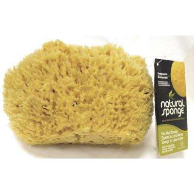 7 - 8 in. Sea Wool Sponge (4-Pack)