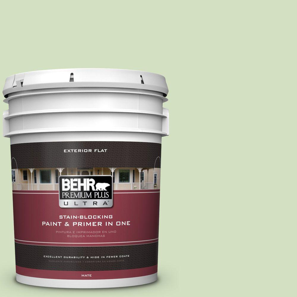 BEHR Premium Plus Ultra 5-gal. #P380-3 Irish Folklore Flat Exterior Paint
