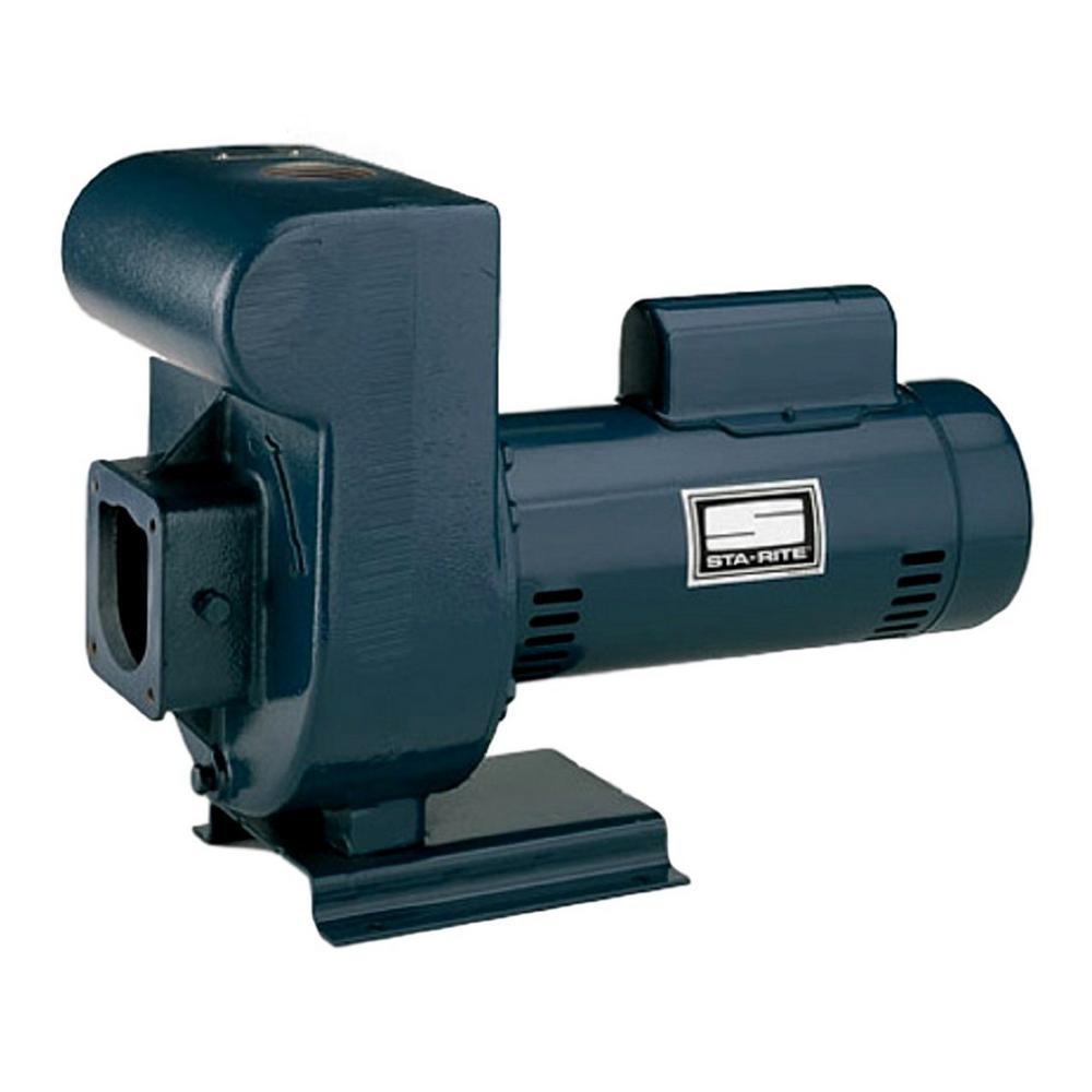 Pentair D-Series 3 HP Single Phase Medium Head Pump with ...