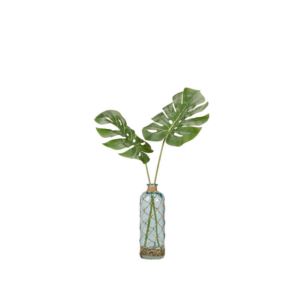 Indoor Split Leaf Philo in Glass Vase