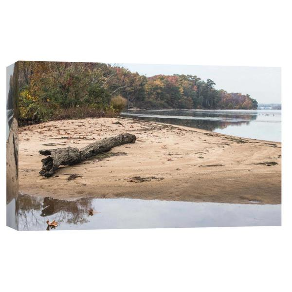 PTM Images 10 in. x 12 in. ''Driftwood '' Printed Canvas