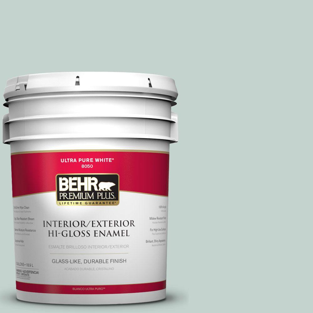 5-gal. #N430-2 Nature's Reflection Hi-Gloss Enamel Interior/Exterior Paint