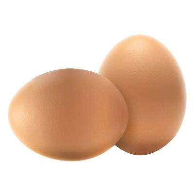 Wooden Decoy Chicken Nesting Eggs Brown Training Eggs for Laying Chickens Hen Nest Boxes (Set of 2)