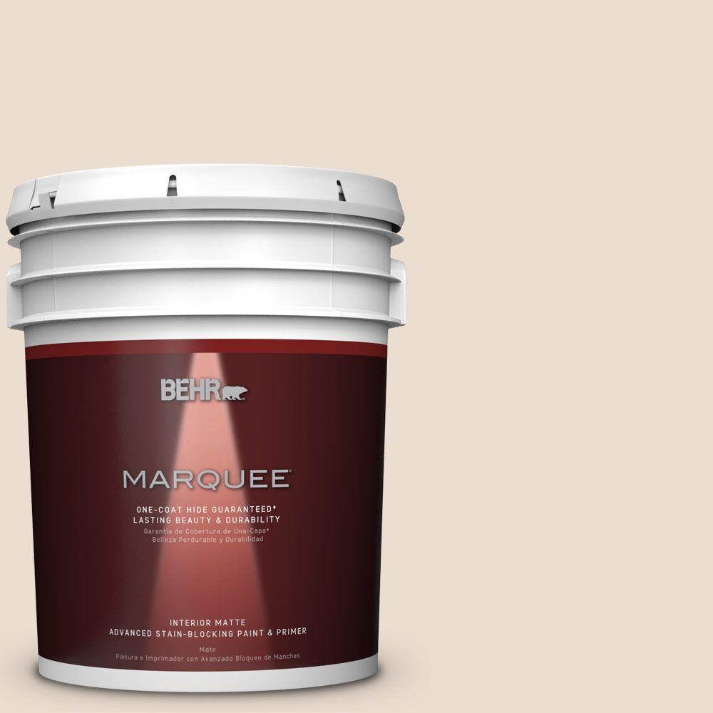 5 gal. #HDC-SP16-01 Chiffon Flat Interior Paint