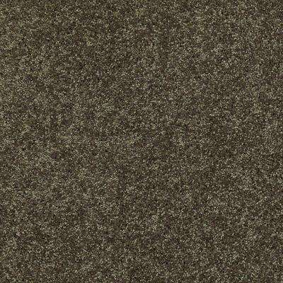 Carpet Sample - Palmdale II 12 - In Color Forest Path 8 in. x 8 in.